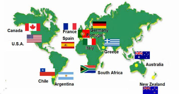 World S Top Wine Regions Red White Or Rose Vineyards